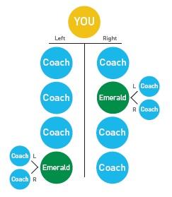 Diamond Coach Level