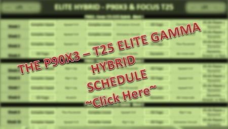 P90X3 T25 Elite Schedule